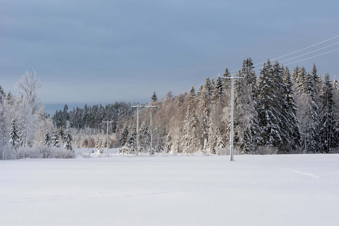 Snötäckt gärde med luftledningar och skog
